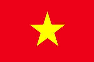 Vietnamese-Translation-Service-English-to-Vietnamese-or-Vice-Versa-400-Words