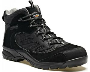 Cap botas de para trabajo Uk6 negra Toe hombre Dalton Safety Steel 12 de Dickies gamuza 07wqxUIvn