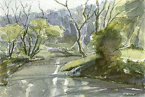 Woodland-Stream-ORIGINAL-WATERCOLOUR-LANDSCAPE-PAINTING-Steve-Greaves-Art-River