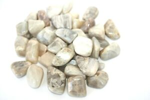One-Moonstone-Tumbled-Stone-20-25mm-Reiki-Healing-Crystal-Reiki