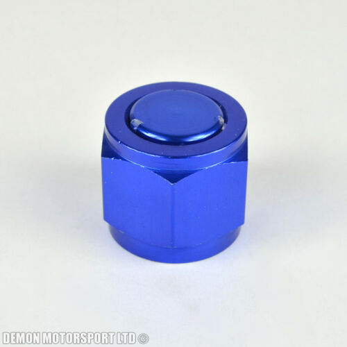 AN10 10AN 10 Blanking Cap BLUE For Alloy Fuel Tank Oil Cooler Surge Tank etc