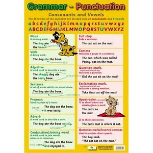 Grammar-amp-Punctuation-Educational-Poster-0047