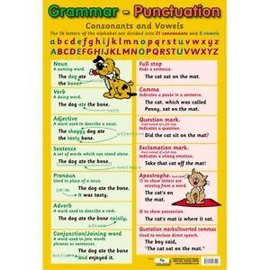 Grammar-amp-Punctuation-Educational-Poster-0047