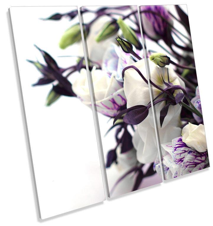 Floral Flower Botanical TREBLE CANVAS WALL ART ART ART Square Picture Print aa67fa