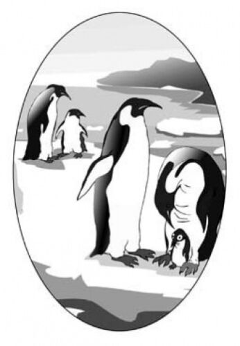 """4/""""X 6/"""" PENQUINS static cling etched glass window decal"""