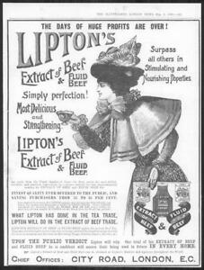 1898-Antique-Print-Advertisements-LIPTONS-Extract-Beef-Fluid-Feathers-239