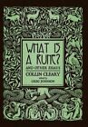 What Is a Rune? and Other Essays by Collin Cleary (Hardback, 2015)