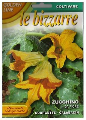 10 Semi/Seeds ZUCCHINO DA FIORE
