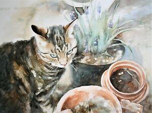 Original-Watercolour-Painting-Cat-034-Flower-Pots-034-by-Gillian-Carolan-38-x-50cm