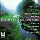 Intimate Encounters von Various Artists (2011)