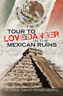 Tour to Love and Danger in the Mexican Ruins by Morris David Rosenberg (Paperback / softback, 2010)