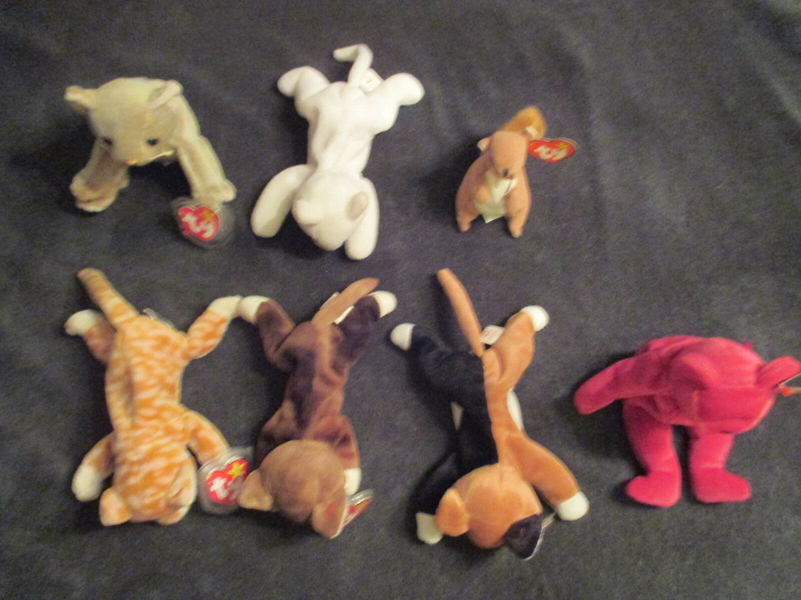 Beanie Babies Lot of 7 -- Very Nice Condition 1 missing tag