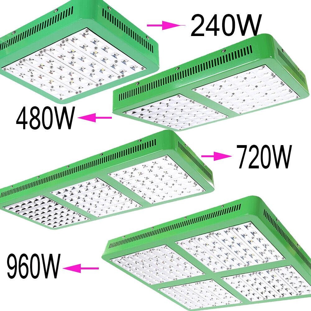 240W 480W 720W 960W LED Grow Light pflanzenlampe vollspektrum EU für Blaumen CUL