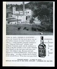 1956 Jack Daniel's Daniels whiskey black angus cow herd photo vintage print ad