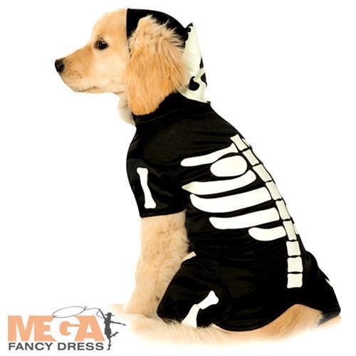 Pet Skeleton Hoodie Fancy Dress Halloween Skull /& Bones Glow In the Dark Costume