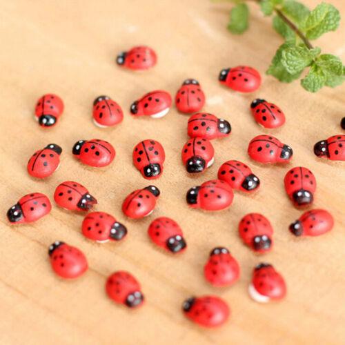 100//50//20//10PC Micro Landscape Decoration Wood Craft Seven-spot Ladybug Beetle v
