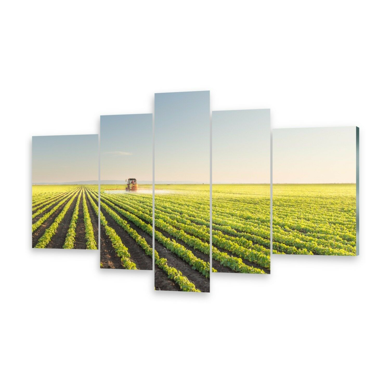 Mehrteilige Bilder Acrylglasbilder Wandbild Feld