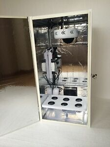 Delightful Image Is Loading Grow Box 6 Site Hydroponic Grow Box Stealth