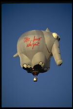 329095 Oliphant German Elephant A4 Photo Print