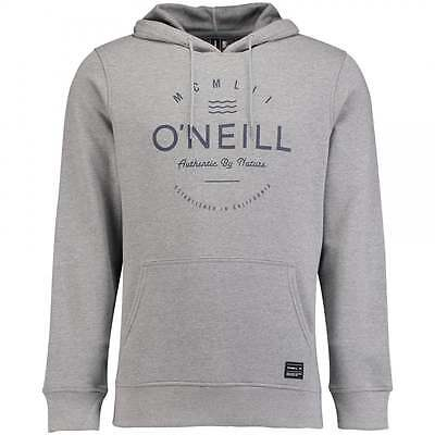 Silver Melee Pleasant In After-Taste Hoodies & Sweatshirts O'neill Original Men's Hoodie