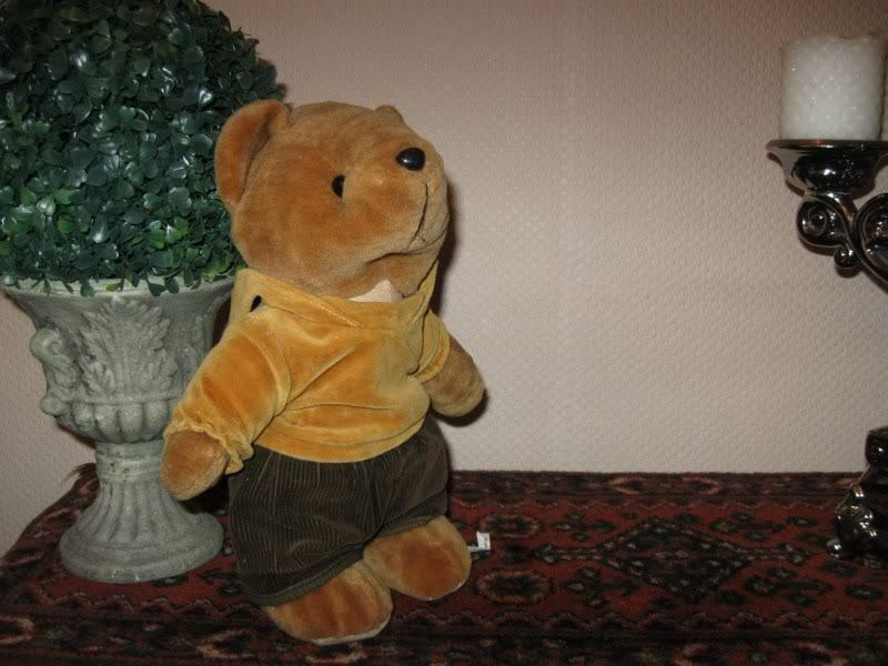 Vintage Dino Toys Holland Teddy Bear with Hoody