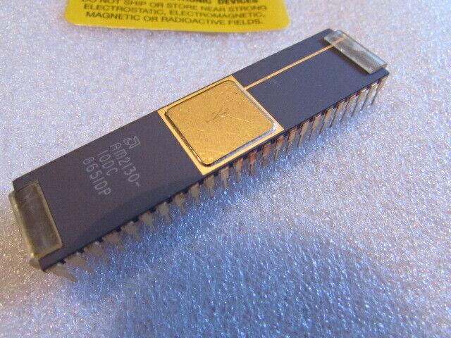 NOS AM2130-10DC AMD 1024 X 8 DUAL PORT SRAM 48-PIN CERAMIC DIP VINTAGE-IC U.S.A