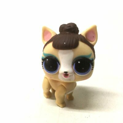 Pup CATNAP Brown Dog /& Biege Miss Puppy Toys 2pcs LOL Surprise pets P-034 B.B