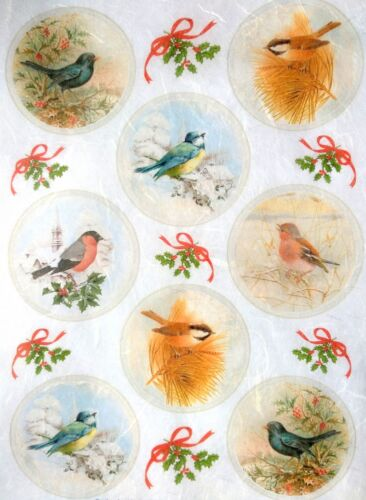 Rice Paper for Decoupage Sheet Craft Vintage Birds Pictures Mix Scrapbooking