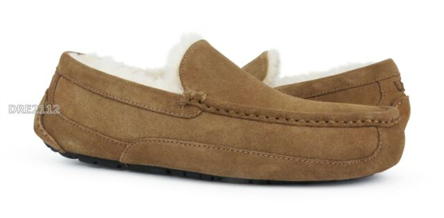 UGG Ascot Chestnut Brown Suede Fur Slippers Mens Size 11 (Fits size 10) *NIB~