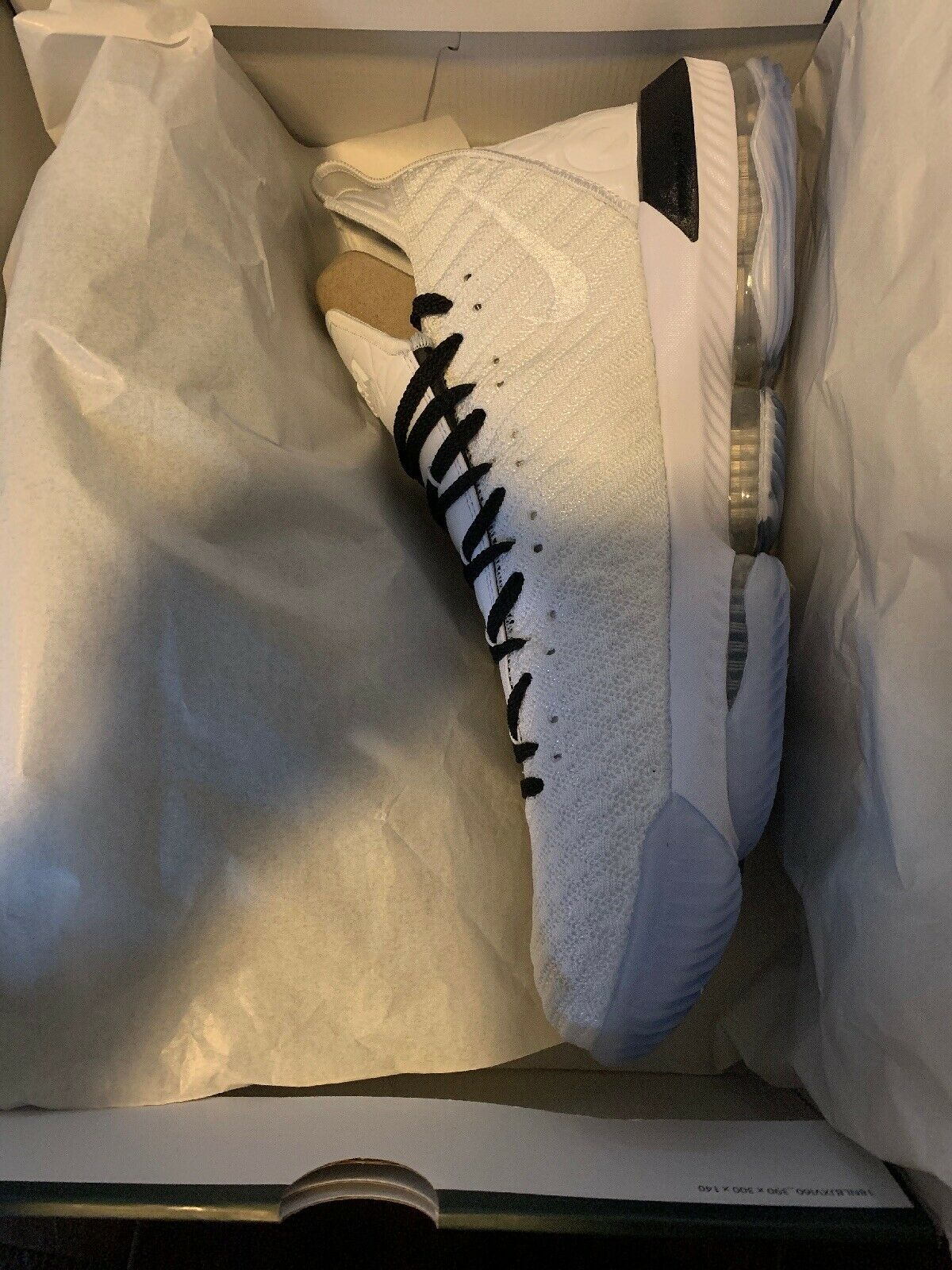 Lebron 16-Equality  I have Two pair of size 16