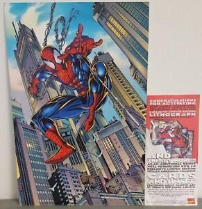 Exclusivo-Edicion-Limitada-Spider-Man-Marvel-Litografia-Firmada-por-Marca-Bagley