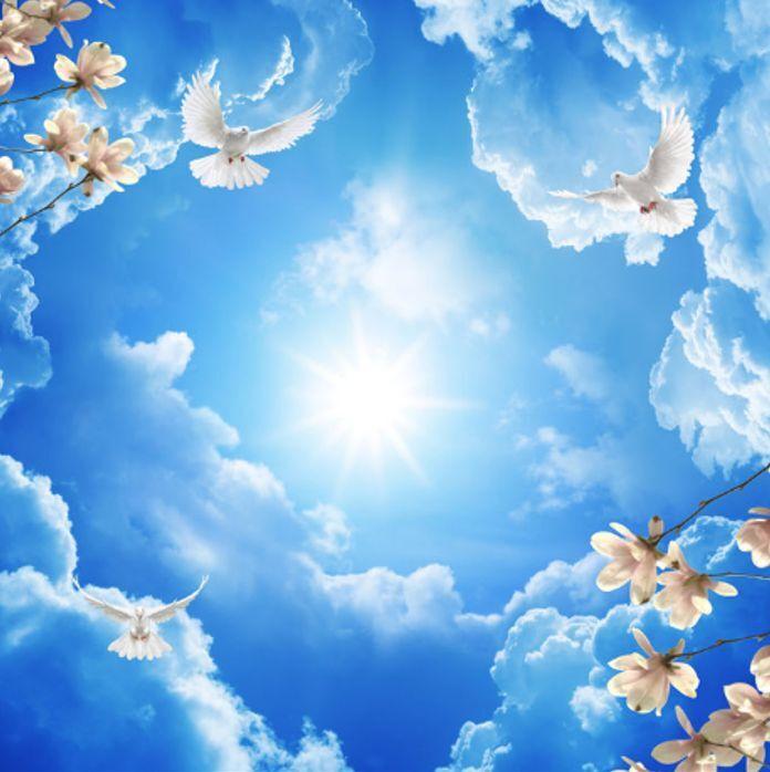 3D Dove Cloud Sky Ceiling WallPaper Murals Wall Print Decal Deco AJ WALLPAPER GB