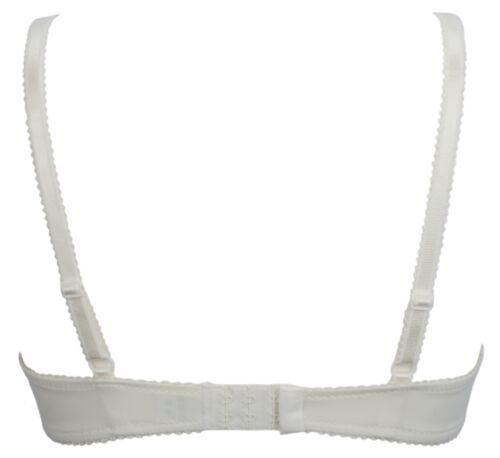 Daniel Axel Lace Panel Non Padded Underwired Bra