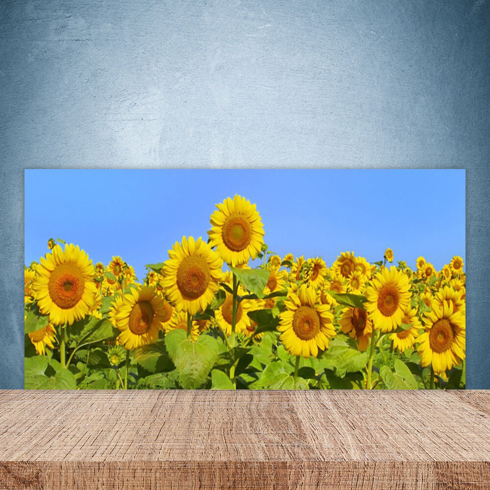 Cupboard kitchen glass wall panel sunfFaibleer floral 100x50