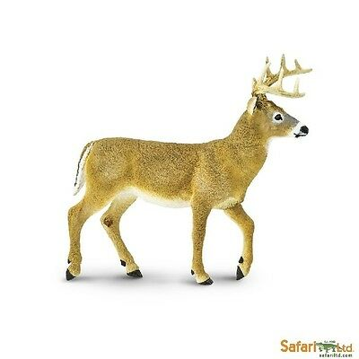 Novel Designs Conscientious White-tailed Deer 17 Cm Series Large Wild Animals Safari Ltd 113589 Novelty 2017 Famous For Selected Materials Delightful Colors And Exquisite Workmanship