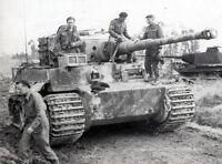 6x4 Gloss Photo ww382 Normandy Calvados Rauray 1944 ry4