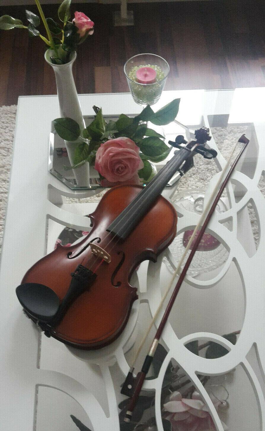 Hochwertig Violine Set 1 2 Geige Bogen Koffer Schulterstütze Classic Cantabile