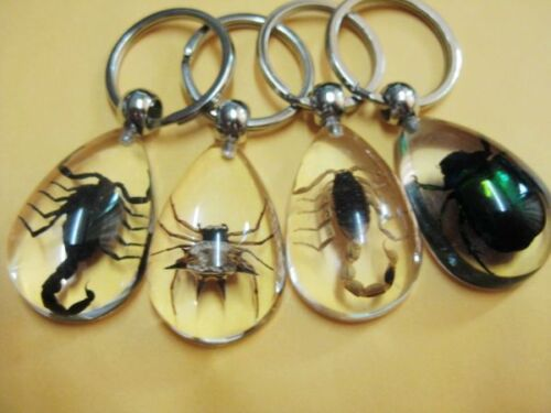 4 pcs Insect Golden spider/&scorpion/&bee Charm key-chains hot gift