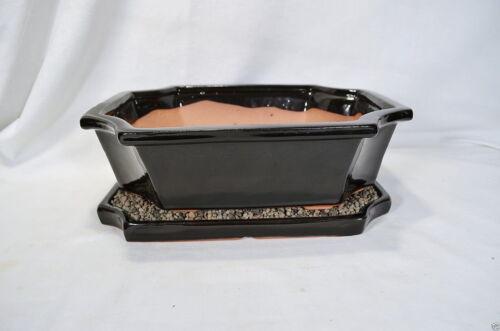 Bonsai Schale 1181 mit Untersetzer schwarz 30x24x9 Ficus Koi Serissa Ulme Neu F