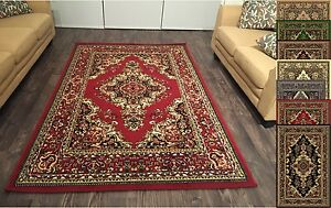 Area Rugs Beautiful Traditional Persian Style Area Rug 5x8