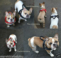 Dog & Co Soft Fleece Padded Dog Harness S M or L Red or Black French Bulldog