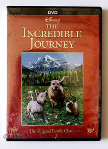 The-Wonderful-World-of-Disney-The-Incredible-Journey-DVD-Original-Homeward-Bound