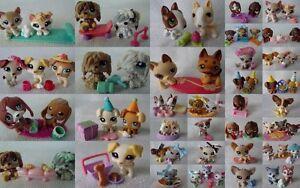 littlest petshop Lps Chiens dogs  1012 1013 68 1930 219 836 385 77 1110 2514 etc