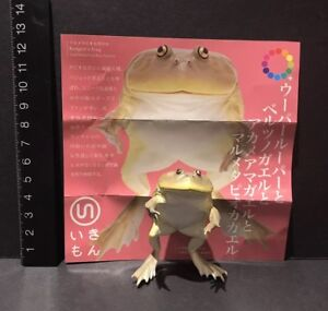 Kitan-Club-Kaiyodo-Nature-Budgett-s-Hippo-Frog-Toad-SP-Limited-Magnet-Figure