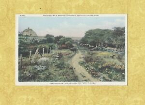 MA-Nantucket-1908-19-antique-postcard-THROUGHT-HAWTHORNE-LANE-MASS