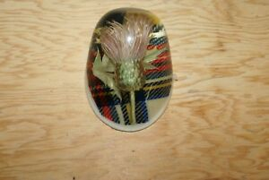 Vintage-Scottish-Thistle-Encased-in-Lucite-Paperweight