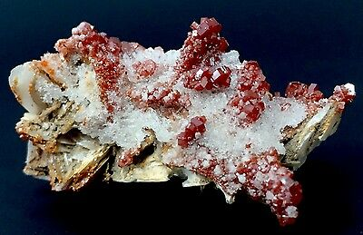 Red Vanadinite Crystal Cluster Specimen Barite Matrix Natural Gemstone Morocco.