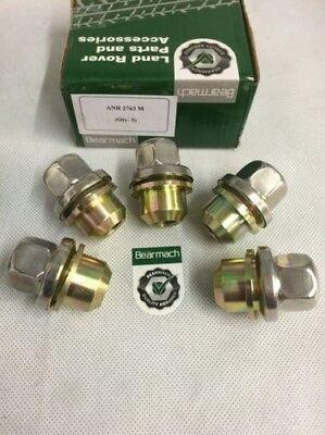 Bonum 5177030 Minikelle aus Kunststoff