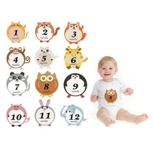 Funny New Animal Print Baby First Year Monthly Milestone Belly Stickers Set T