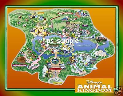 Flexible Fridge MAGNET of Disney - ANIMAL KINGDOM MAP   eBay